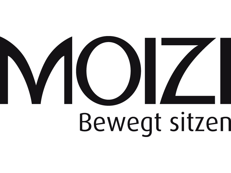 MOIZI Logo deutsch <br> JPG | RGB | 800 x 350 px | 6,8 x 3 cm | 300 dpi | 88 kb
