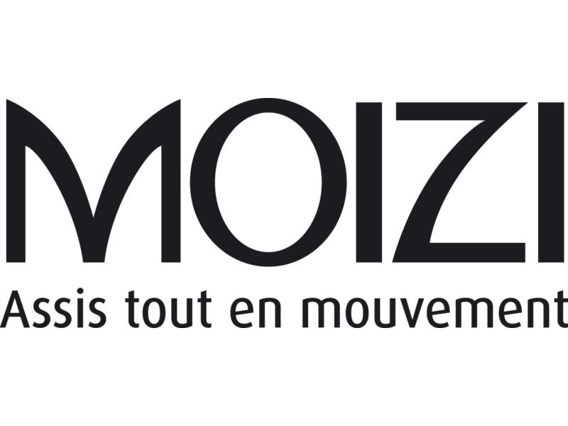 MOIZI Logo Französisch <br> JPG   RGB   800 x 350 px   6,8 x 3 cm   300 dpi   88 kb