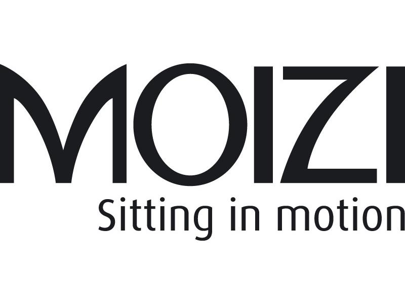 MOIZI Logo englisch <br> JPG | RGB | 800 x 350 px | 6,8 x 3 cm | 300 dpi | 88 kb