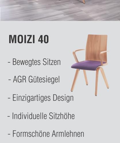 MOIZI 40<br>Ansichtsbild | JPG | 418 x 1007 | 66 KB